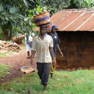 Faires Avocadöl aus Kenia